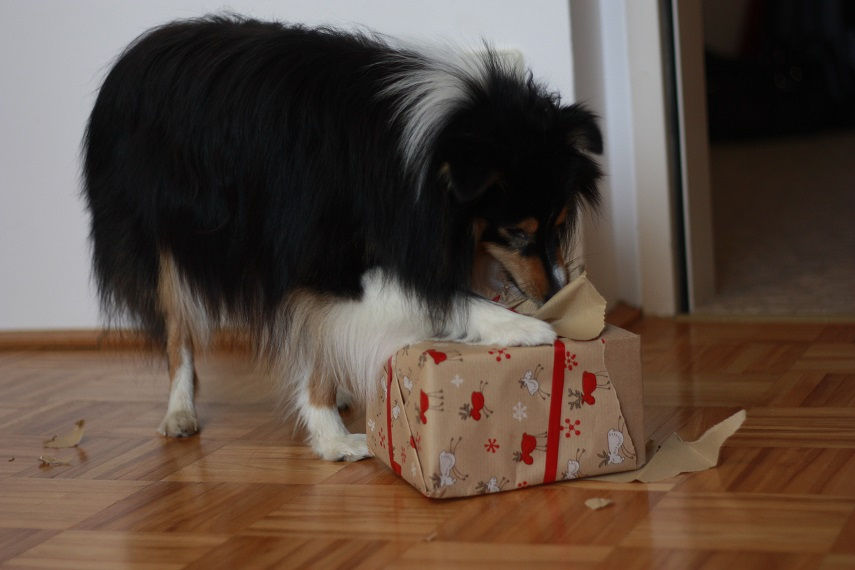 geschenk2